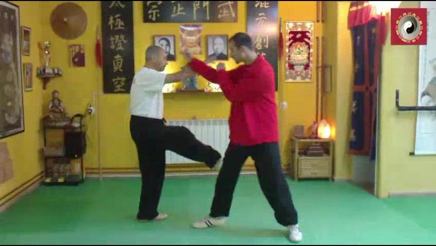 Aplicaciones marciales de los primeros movimientos de la forma Hun Yuan de 24