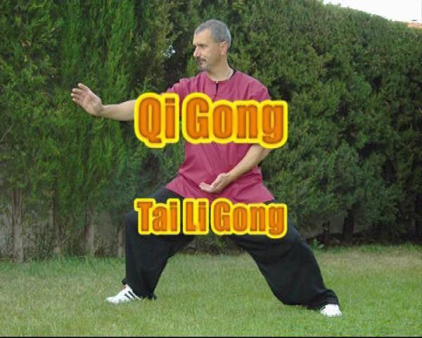 Tai Li Gong -Qi Gong de la Gran Potencia