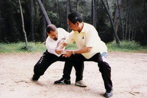 Feng Zhi 1998