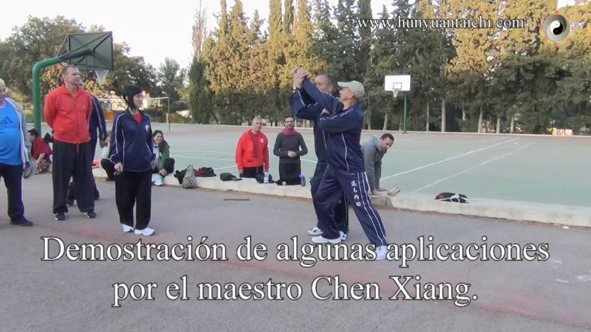 Aplicaciones con el maestro Chen Xiang