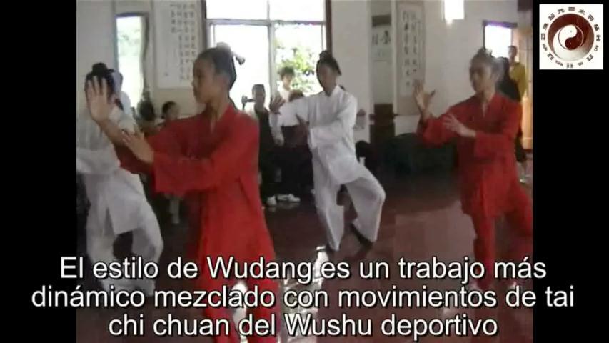 Wudang Tai Chi y Hun Yuan Tai Chi